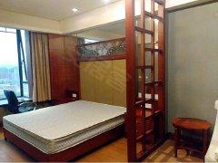 丽景路口 海航白金汇 欧式精装公寓1房 低价等您来拿下