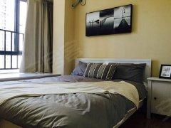整租,中环广场,1室1厅1卫,50平米
