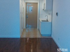 苹果公寓 1居室 家具家电齐全 拎包入住房 包物业