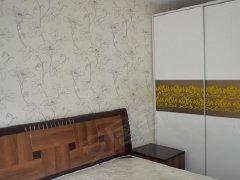 整租,锦富小区,1室1厅1卫,41平米