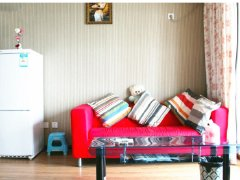 整租,天地园,1室1厅1卫,55平米