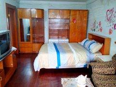 东坡小区,1室1厅1卫,有基础的家具、电器。精致装修
