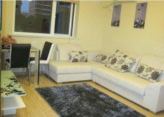 整租,兴海幸福家园,1室1厅1卫,50平米