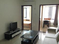 整租,丰泽名苑,1室1厅1卫,40平米,