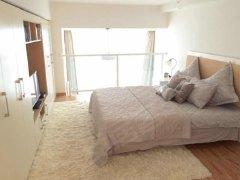 整租,龙城峰景,1室1厅1卫,50平米