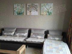 整租,中乐国际,1室1厅1卫,48平米