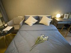 整租,蓝钻国际,1室1厅1卫,46平米